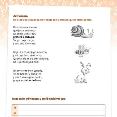 Actividades complementarias - Lenguaje y Comunicación - Curriculum ...