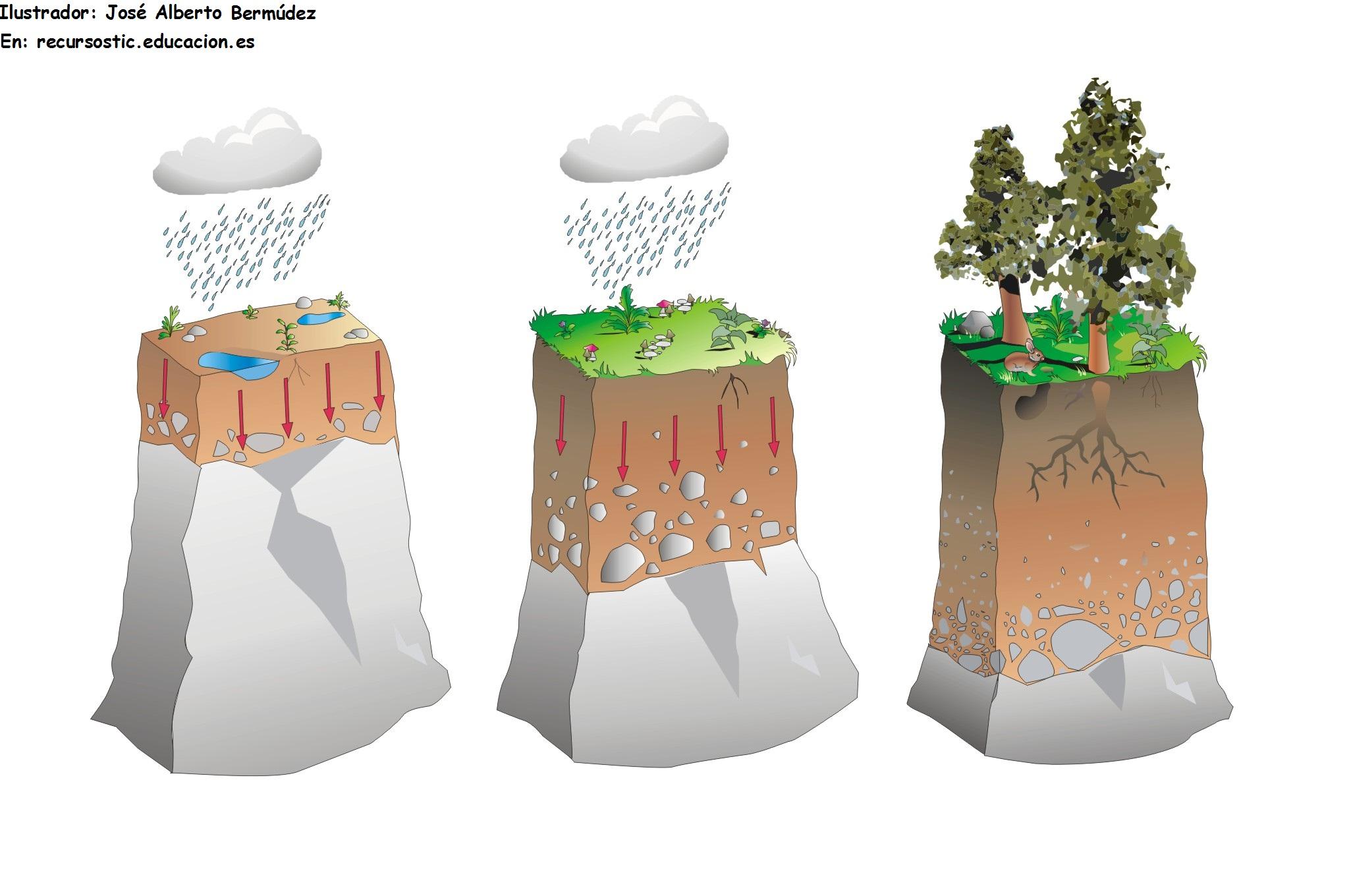 capas de la tierra formacion