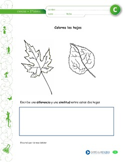 CN01 OA 04 - Currículum en línea. MINEDUC. Gobierno de Chile.