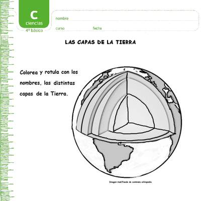 Actividades complementarias - Ciencias Naturales - Curriculum ...