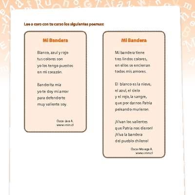 Poema Curriculum Nacional Mineduc Chile