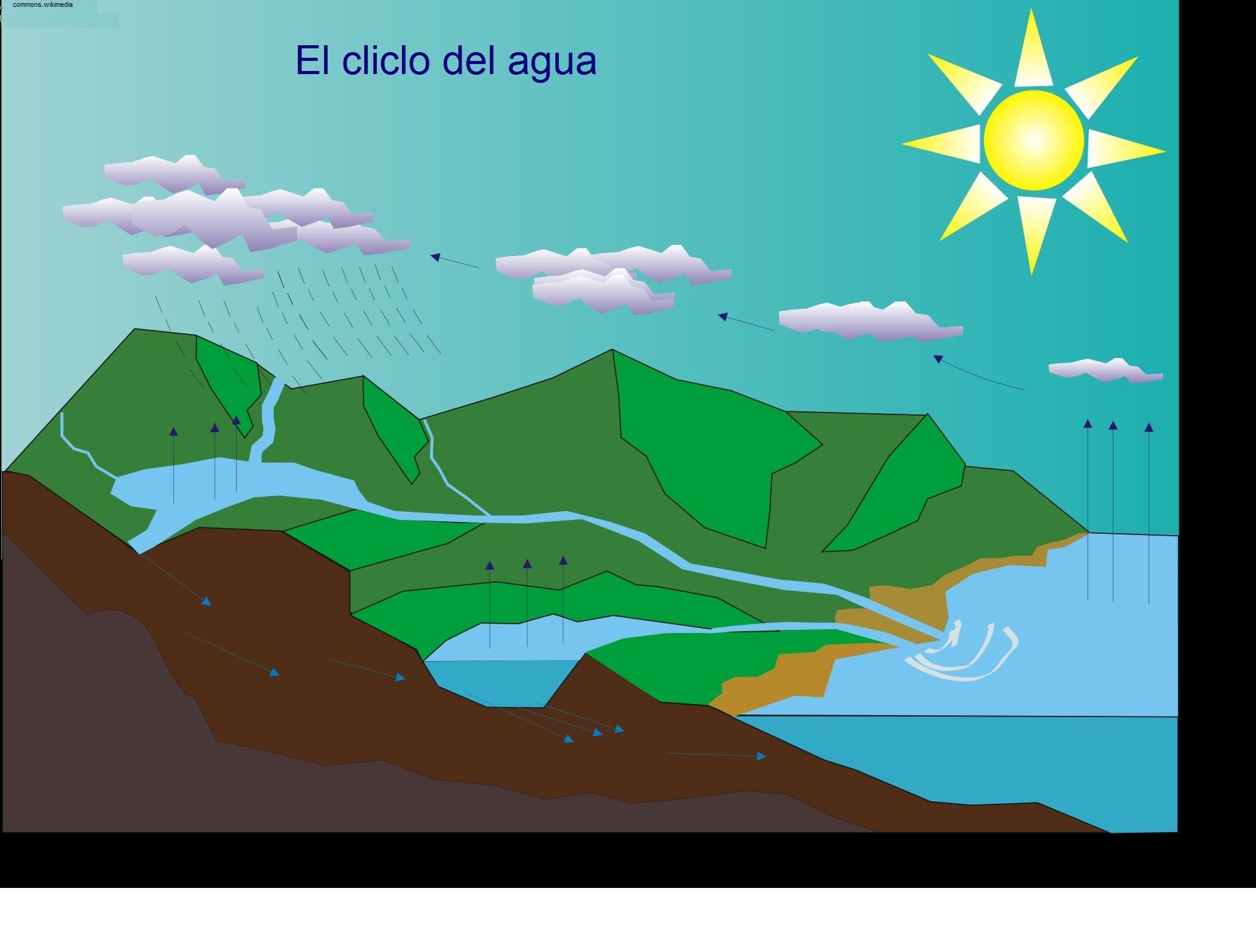 ciclo del agua - Currículum en línea. MINEDUC. Gobierno de Chile.