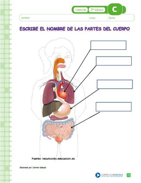 CN02 OA 07  Currculum en lnea MINEDUC Gobierno de Chile