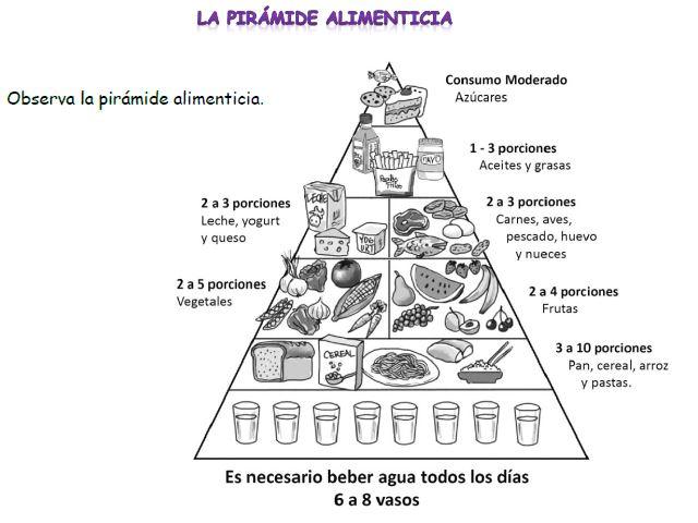 nutrición - Currículum en línea. MINEDUC. Gobierno de Chile.