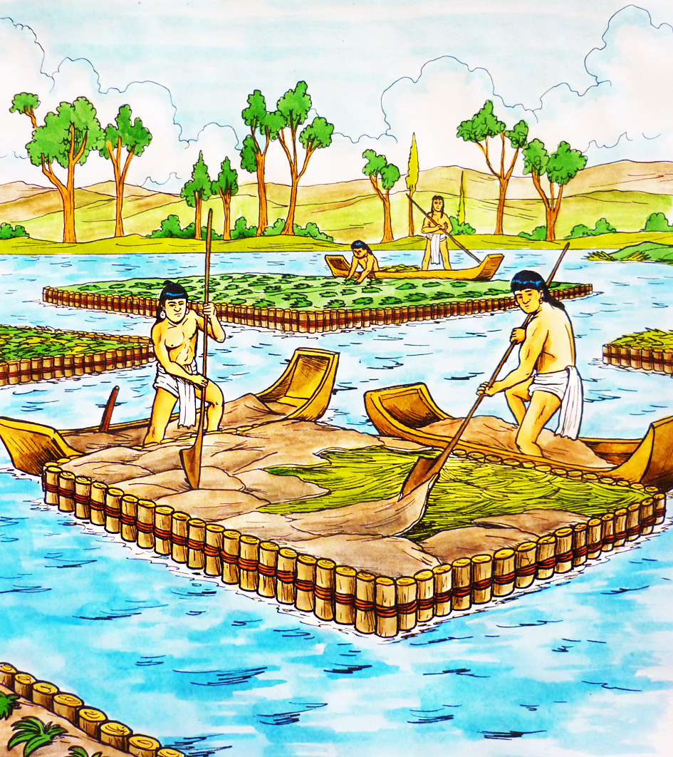 chinampas aztecas - photo #1