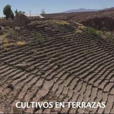 Terrazas De Caspana Curriculum Nacional Mineduc Chile